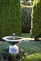 small fountain in the garden