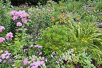 Flower gardening: Yarrow achillea, phlox paniculata, Echinacea, daylilies, nasturtiums, petunias, dahlias, lupines, coreopsis, cottage garden mix of annuals and perennials.