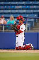 Salem Red Sox catcher Isaias Lucena (39) during a game against the Lynchburg Hillcats on May 10, 2018 at Haley Toyota Field in Salem, Virginia.  Lynchburg defeated Salem 11-5.  (Mike Janes/Four Seam Images)