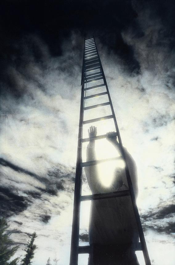 Figure climbing ladder