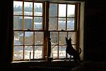 Carlos looking out window in winter