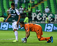 PALMIRA - COLOMBIA, 21-08-2019: Jose Cuadrado arquero del Nacional en acción durante el partido entre Deportivo Cali y Atlético Nacional por la fecha 7 de la Liga Águila II 2019 jugado en el estadio Deportivo Cali de la ciudad de Palmira. / Jose Cuadrado goalkeeper of Nacional in action during the Final second leg match between Deportivo Cali and Atletico Nacional of the Aguila League II 2019 played at Deportivo Cali stadium in Palmira city. Photo: VizzorImage / Nelson Rios / Cont