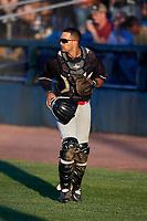 Batavia Muckdogs catcher Igor Baez (29) during a game against the Auburn Doubledays on June 15, 2018 at Falcon Park in Auburn, New York.  Auburn defeated Batavia 5-1.  (Mike Janes/Four Seam Images)