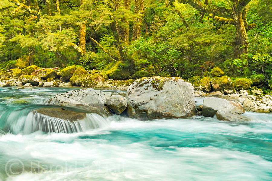 A colorful stream runs along the roadside when driving into Milford Sound in southern New Zealand.