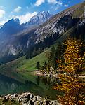Schweiz, Kanton Appenzell Innerrhoden, Appenzellerland: Seealpsee mit Blick auf das Alpsteinmassiv | Switzerland, Canton Appenzell Innerrhoden, Appenzellerland: lake Seealpsee and Alpstein mountains