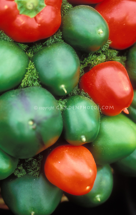 Capsicum annuum 'Cherry Bomb' pepper cherry peppers, green and red, picked