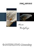 Marcello, SYMPATHY, TRAUER, BEILEID, CONDOLACIÓN, paintings+++++,ITMCLUT1015,#T#, EVERYDAY