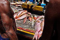 Brazilian fishermen (jangadeiros) sell caught fish on the beach of Caponga, Ceará state, northeastern Brazil, 12 March 2004. Jangadeiros, working on a unique wooden raft boat called jangada, keep the tradition of artisan fishing for more than four hundred years. However, being a fisherman on jangada is highly dangerous job. Jangadeiros spend up to several days on high-sea, sailing tens of kilometres far from the coast, with no navigation on board. In the last two decades jangadeiros have been facing up the pressure from motorized vessels which use modern, effective (and environmentally destructive) fishing methods. Every time jangadeiros come back from the sea with less fish.