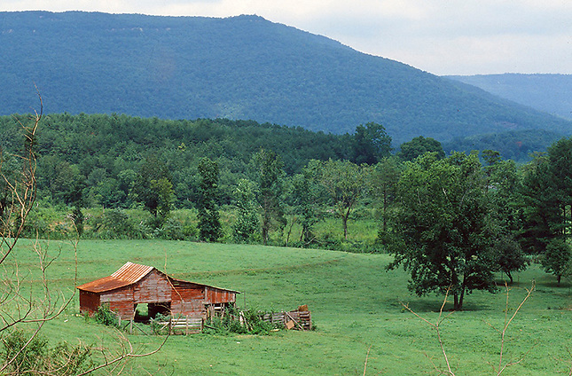 Old barn in pasture