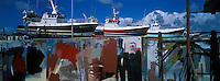 Europe/France/Bretagne/29/Finistère/Le Guilvinec/Lechiagat : Bateaux de pêche en carenage