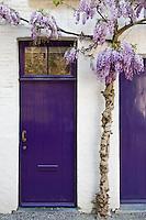 Belgium, Bruges, Painted doorways with lilac tree