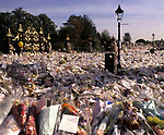 A sea of flowers placed by the public in memory of Diana, Princess of Wales, September 1997, Kensington Palace, London, UK.