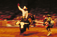 Cowboy riding bull in rodeo. Birmingham Alabama.