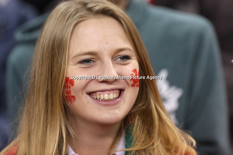 Pictured: A welsh female supporter. Saturday 15 November 2014<br /> Re: Dove Men Series rugby, Wales v Fiji at the Millennium Stadium, Cardiff, south Wales, UK.