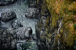 Dramatic aerial scenery of shiny rocky river bed and mossy banks of the Englishman River. Englishman River Falls Provincial Park. Errington, Vancouver Island, BC, Canada Image © MaximImages, License at https://www.maximimages.com