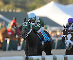 Watch Me Go with Louis Garcia wins The Tampa Bay Debry at Tampa Bay Downs in Oldsmar Fl 3.12.2011