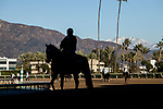 January 30, 2021: Snowon the mountains in the background of Santa Anita Park in Arcadia, California on January 30, 2021. Evers/Eclipse Sportswire/CSM
