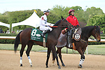 HOT SPRINGS, AR - APRIL 14: Quip #8, with jockey Florent Geroux aboard before crossing the finish line in the Arkansas Derby at Oaklawn Park on April 14, 2018 in Hot Springs, Arkansas. (Photo by Justin Manning/Eclipse Sportswire/Getty Images)