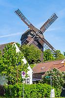 Historische Bockwindmühle, Altstadtinsel Werder (Havel), Potsdam-Mittelmark, Brandenburg, Deutschland