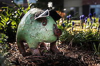A green metal pig lawn ornament prowls among greenery and blue flowers in an urban garden.