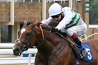 Winner of The Federation Of Bloodstock Agents Novice Stake  Sidereal ridden by Oisin Murphy and trained by Andrew Balding during Horse Racing at Salisbury Racecourse on 13th August 2020