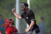 Umpire Reed Basner makes a strike call as Boston Red Sox catcher Austin Rei (28) throws the ball back to the pitcher during an instructional league game against the Minnesota Twins on September 26, 2015 at CenturyLink Sports Complex in Fort Myers, Florida.  (Mike Janes/Four Seam Images)