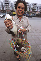 A lady shows several guinea pigs that she has bought to take home for soup. Guinea pigs are sold live as popular food that is used in hot pot and a medicinal broth that is believed to be good for health and to keep the hair from going grey...PHOTO BY SINOPIX