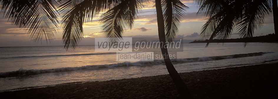 France/DOM/Martinique: Plage des salines - Cocotiers