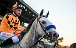 Tap It Rich ridden by Mike Smith at the Cash Call Futurity on December 14, 2013 at Betfair Hollywood Park in Inglewood, California .(Alex Evers/ Eclipse Sportswire)