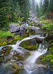 Mount Rainier Natinonal Park, Washington: <br /> Detail of falling waters on the upper reaches of the Paradise River on the Fourth Crossing trail