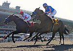 First Dude (no. 7), ridden by Martin Garcia and trained by Bob Baffert, wins the 72nd running of the grade 1 Hollywood Gold Cup for three year olds and upward on July 09, 2011 at Hollywood Park in Inglewood, California.  (Bob Mayberger/Eclipse Sportswire)