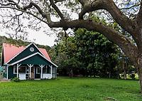 The Mark Twain Monkey Pod Tree, near Wai'ohinu and Na'alehu, South Point, Big Island of Hawai'i.