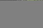 Hip #104 Dynaformer - Irridescence colt at the  Keeneland September Yearling Sale.  September 9, 2012.