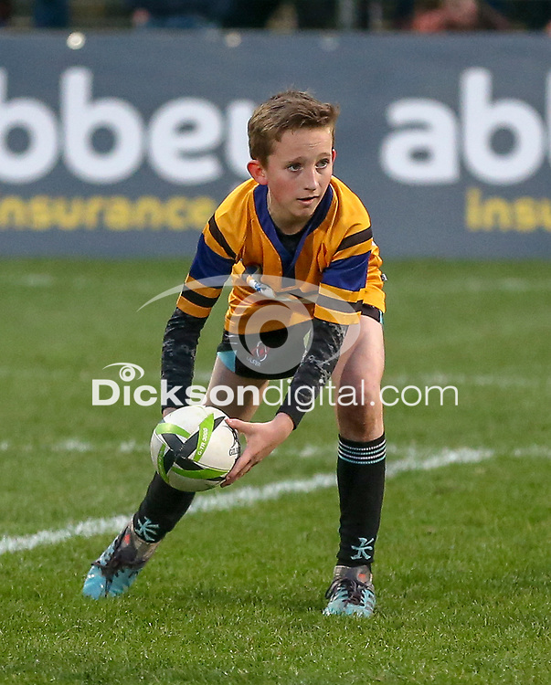 Saturday 23rd March 2019   Ulster Rugby vs Kings<br /> <br /> Halftime Mini-Rugby during the Guinness PRO14 clash between Ulster Rugby and the Southern Kings at Kingspan Stadium, Ravenhill Park, Belfast, Northern Ireland. Photo by John Dickson / DICKSONDIGITAL
