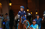 """DEL MAR, CA  AUGUST 21: #9 Cupid's Claws, ridden by Juan Hernandez in the post parade of the Del Mar Handicap (Grade ll) Breeders Cup """"Win and You're In"""" Turf Division on August 21, 2021 at Del Mar Thoroughbred Club in Del Mar, CA  (Photo by Casey Phillips/Eclipse Sportswire/CSM)"""