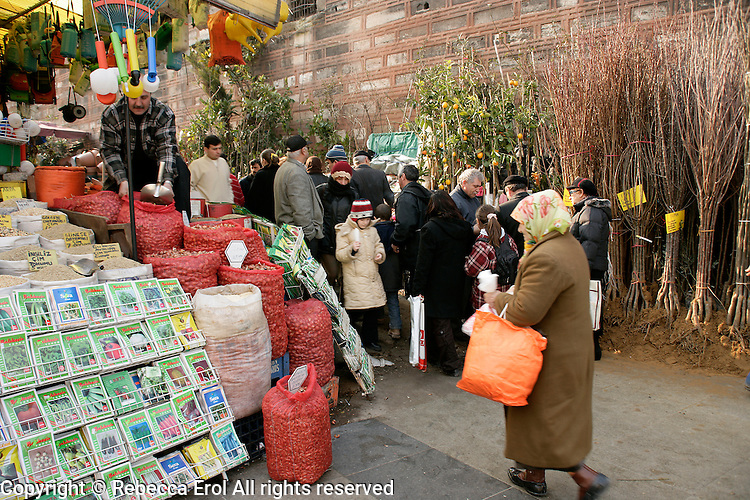 BHorticultural market at Eminonu, Istanbul, Turkey