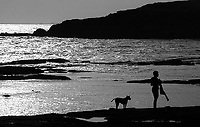 10.2008 Dwarka (Gujarat)<br /> <br /> Man and a dog after bath in the sea.<br /> <br /> Un homme et un chien après un bain de mer.