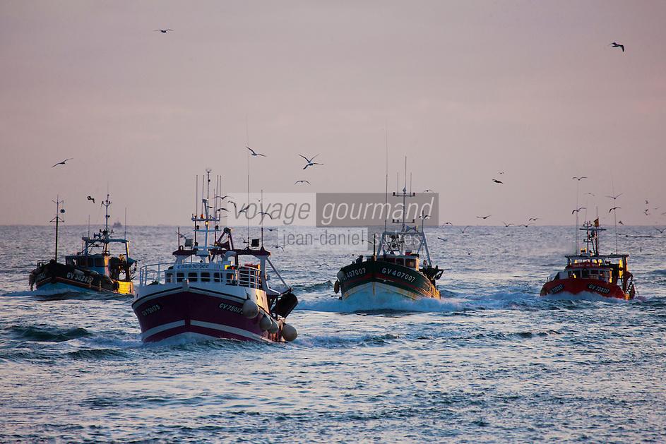 Europe/France/Bretagne/29/Finistère/ Le Guilvinec: Retour des bateaux de pêche