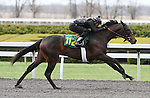 April 03, 2014: Hip 112 Medaglia d'oro - Honey Ryder consigned by Wavertree Stables worked 1/4 in 21:2 .  Candice Chavez/ESW/CSM