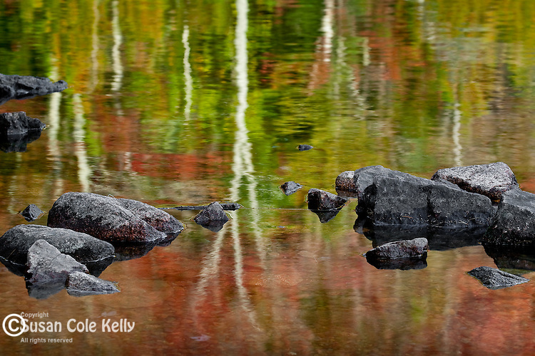 Reflections in Bubble Pond, Acadia National Park, Downeast, ME
