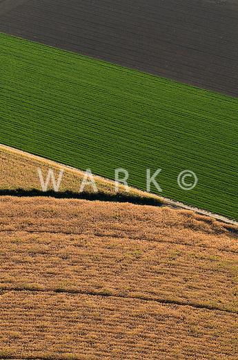 fields of many kinds