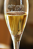 Domaine Jean Louis Denois. Limoux. Languedoc. A glass of sparkling Limoux wine. France. Europe.