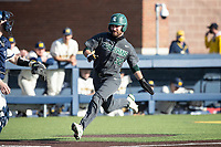 Michigan State third baseman Zach Iverson (33) prepares to slide home against the Michigan Wolverines on March 21, 2021 in NCAA baseball action at Ray Fisher Stadium in Ann Arbor, Michigan. Michigan scored 8 runs in the bottom of the ninth inning to defeat the Spartans 8-7. (Andrew Woolley/Four Seam Images)