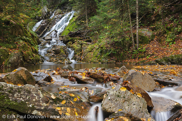 Huntington Cascades on Cascade Brook in Dixville Notch State Park, New Hampshire USA during the autumn months.