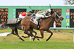 January 16, 2016: Street of Gold with Robby Albarado up heads to the finish line during the Marie G. Krantz Memorial Stakes race at the Fairground race course in New Orleans Louisiana. Steve Dalmado/ESW/CSM