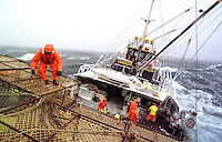 """Crewman Joe Hinton works on the stack on the fishing vessel """"Reliance""""  during a storm in the Bering Sea which took down four boats in four days during opilio crab fishing in February 1994.  Only one crewman lost his life which was considered very fortunate. The Bering Sea is known for having the worst storms in the world.  Crab fishing in the Bering Sea is considered to be one of the most dangerous jobs in the world.  This fishery is managed by the Alaska Department of Fish and Game and is a sustainable fishery.  The Discovery Channel produced a TV series called """"The Deadliest Catch"""" which popularized this fishery.  Today the fishery has been consolidated resulting in a lot less boats participating in this fishery based out of Dutch Harbor, Alaska."""
