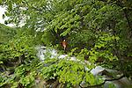 parc national des lacs de Plitvice. Plitvice national park.