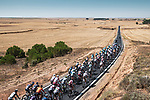 The peloton lined out during Stage 2 of La Vuelta d'Espana 2021, running 166.7km from Caleruega. VIII Centenario de Santo Domingo de Guzmán to Burgos. Gamonal, Spain. 15th August 2021.    <br /> Picture: Unipublic/Charly Lopez   Cyclefile<br /> <br /> All photos usage must carry mandatory copyright credit (© Cyclefile   Unipublic/Charly Lopez)
