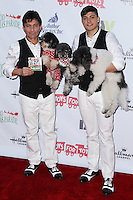 HOLLYWOOD, CA - DECEMBER 01: Olate Dogs arriving at the 82nd Annual Hollywood Christmas Parade held at Hollywood Boulevard on December 1, 2013 in Hollywood, California. (Photo by Xavier Collin/Celebrity Monitor)