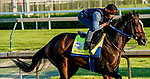 April 27, 2021: Super Stock, trained by trainer Steve Asmussen, exercises in preparation for the Kentucky Derby at Churchill Downs on April 27, 2021 in Louisville, Kentucky. Scott Serio/Eclipse Sportswire/CSM